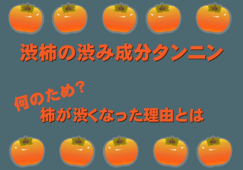 渋柿の渋み成分タンニン解説記事